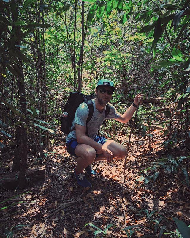 Booyaka, booyaka jungle is massive. #lostinthejungle