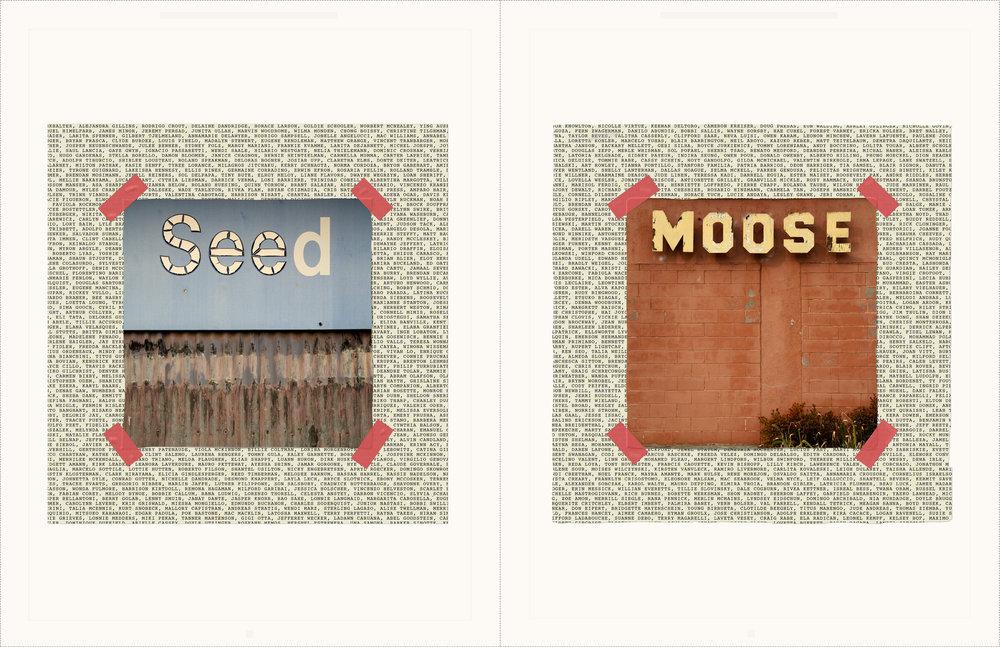 Seed Moose copy.jpg