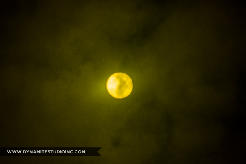 www.dynamitestudioinc.com-eclipse-photography-2017-professional-photographer-orlando-2.jpg