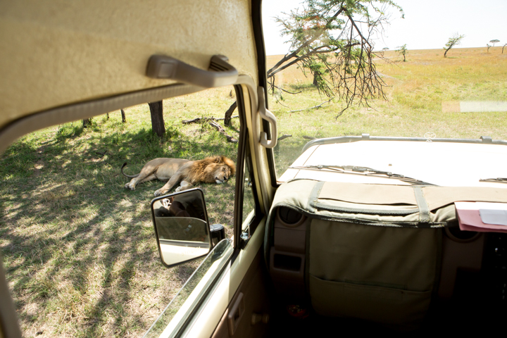 www.dynamitestudioinc.com-serengeti-africa-professional-travel-photography-orlando-47.jpg