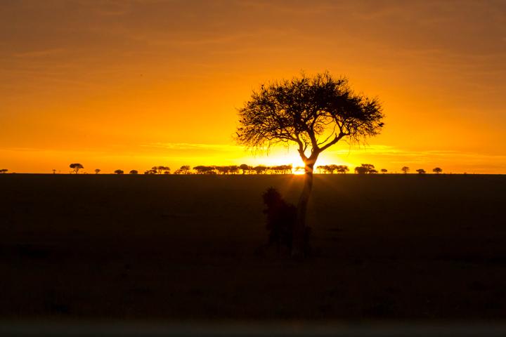 www.dynamitestudioinc.com-tanzania-serengeti-africa-professional-travel-photography-orlando-7070.jpg