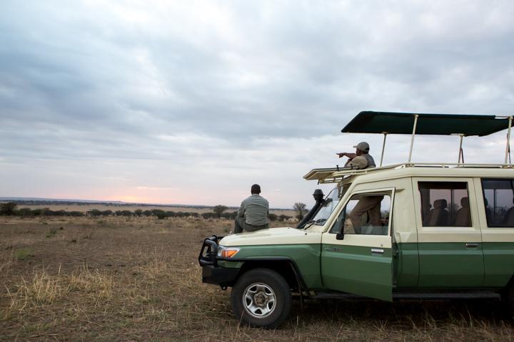 www.dynamitestudioinc.com-serengeti-africa-professional-travel-photography-orlando-1476.jpg
