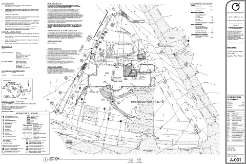 Permit-ready site plan, with surveyed information included