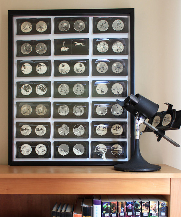 Stereoscope.jpg