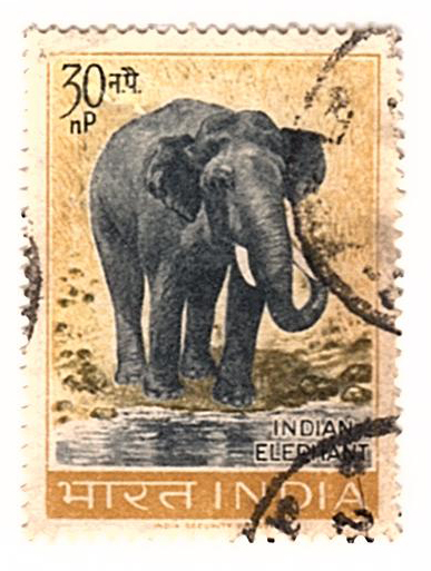 Indian elephant stamp.jpg