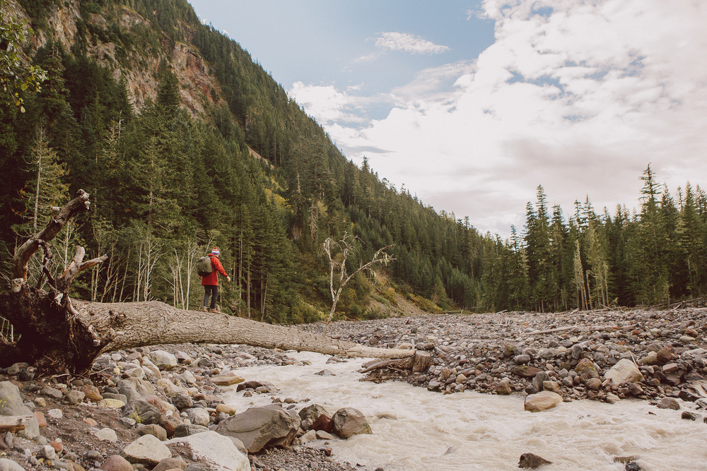 Mt Rainier hiking