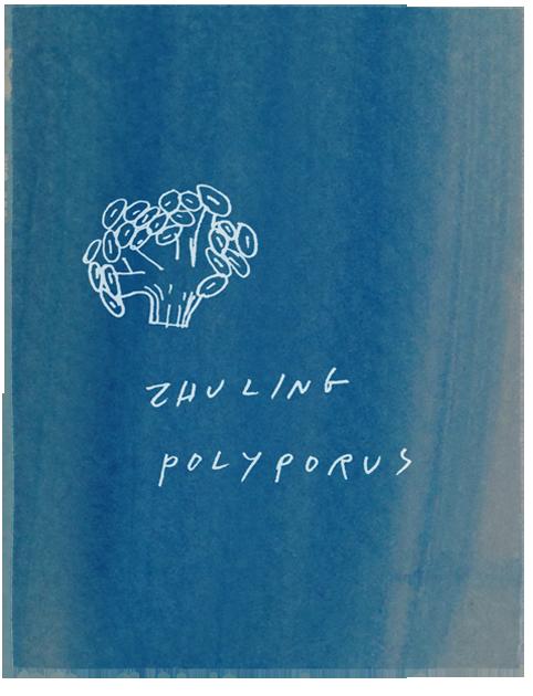 zhuling.png