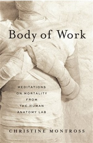 body-of-work-book-cover-paperback.jpg