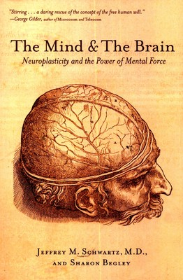 the-mind-and-the-brain-400x400-imadury6ftbnsstx.jpeg