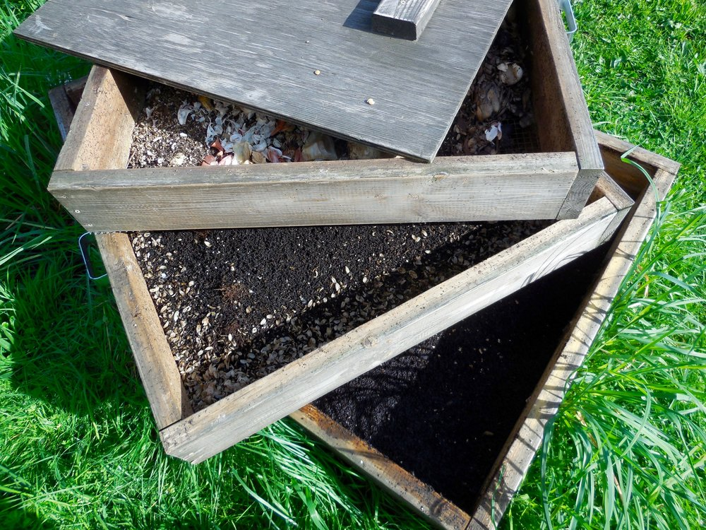 Worm castings were added to the top soil for nutrients. In this style of worm bin, The principle of competition as a driver of natural processes is also apparent: the worms seek upward for the more nutritious food, moving between the middle and top boxes as newer, tastier scraps are added.