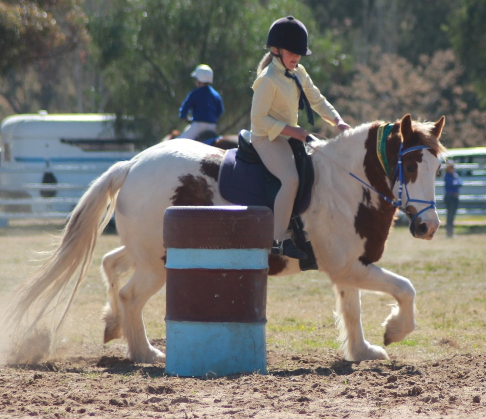 horse sports4.jpg
