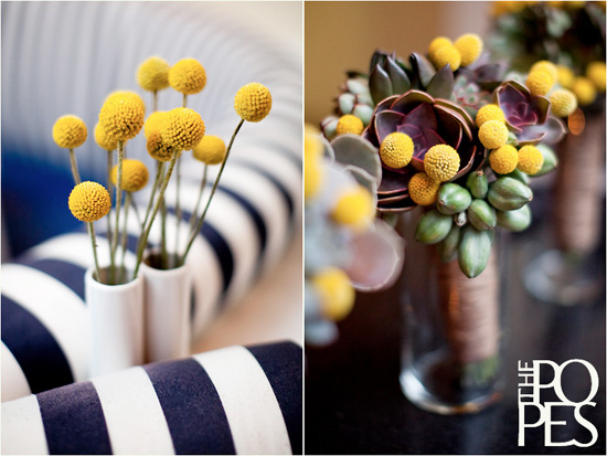 The cutest yellow flower billy buttons or billy balls for weddings billy ball succulent bouquets via gerald and airika pope mightylinksfo