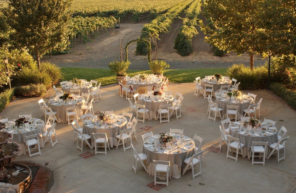 Dinner-on-the-vineyard.jpg