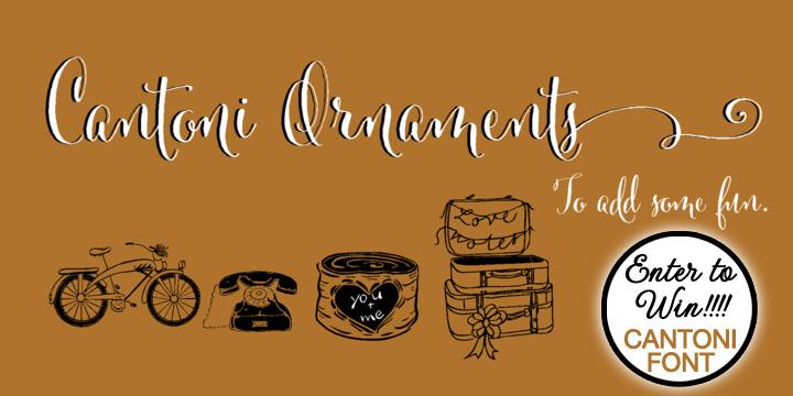cantoni-font-giveaway-082713-3.jpg