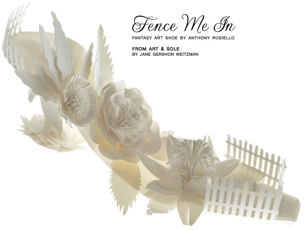 fence-me-in-shoe-101613.jpg