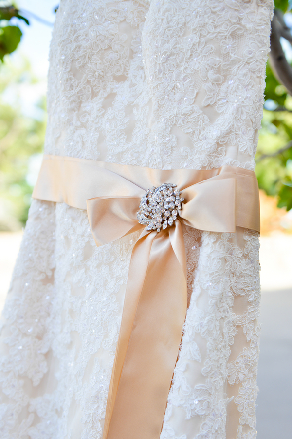 Gorgeous Wedding Gown with brooch on sash | zoo wedding | photo by Trystan Photography