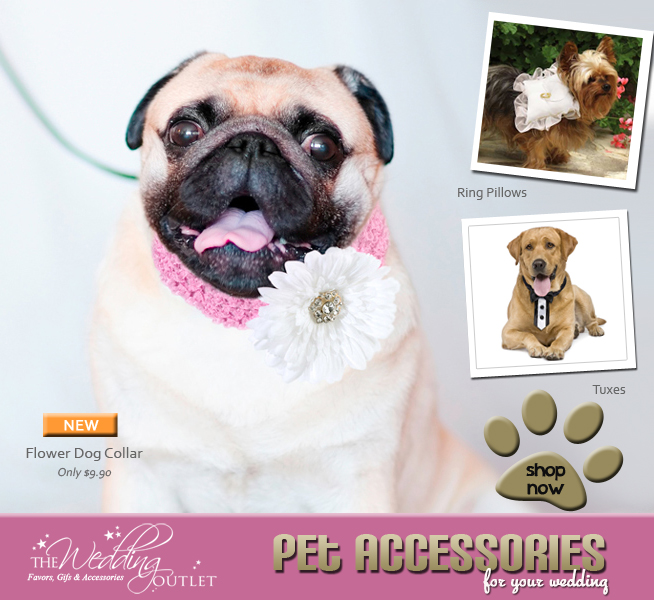 The cutest accessories for your pet{s} on your wedding day. #ringpillows #tuxedos #flowercollar