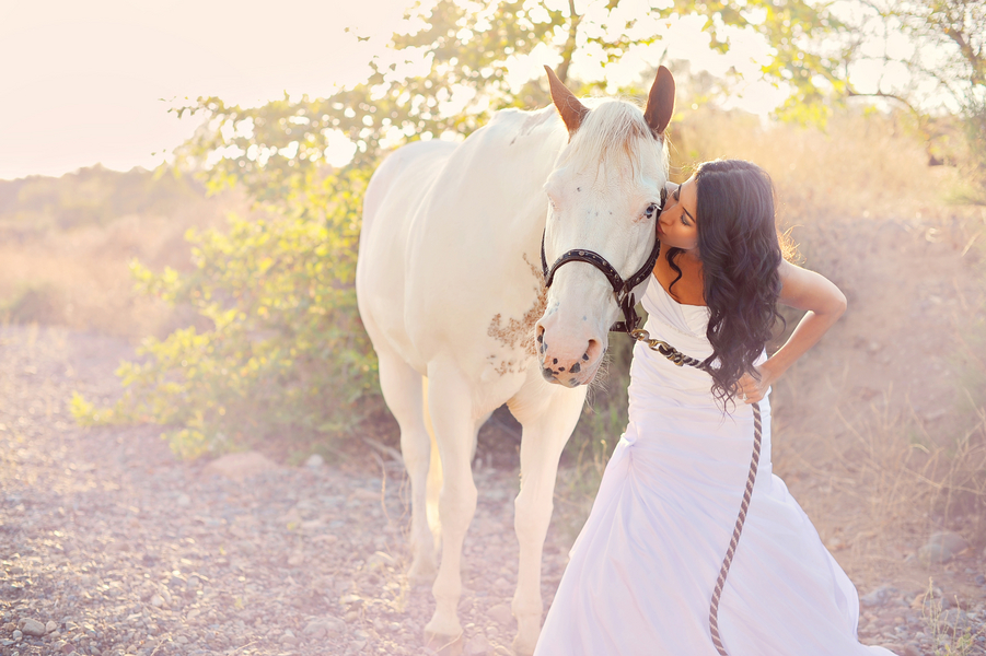 Bridal Portrait with a white horse | from Arina B Photography