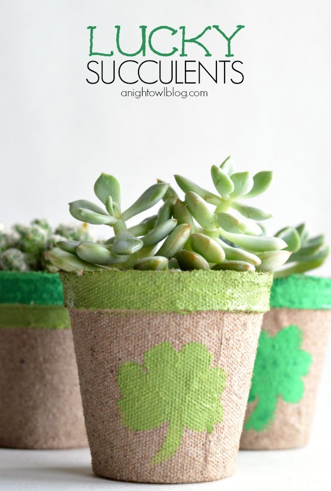 "Potted ""Lucky Succulents"" created by A Night Owl Blog {www.anightowlblog.com} for Snap Creativity {www.snapcreativity.com}"