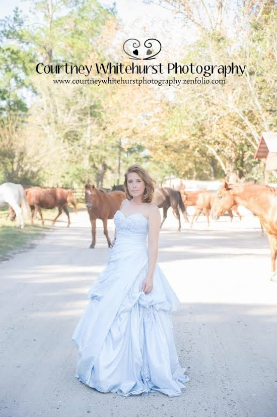 Unexpected wandering horses behind the bride | by Courtney Whitehurst Photography www.courtneywhitehurstphotography.zenfolio.com