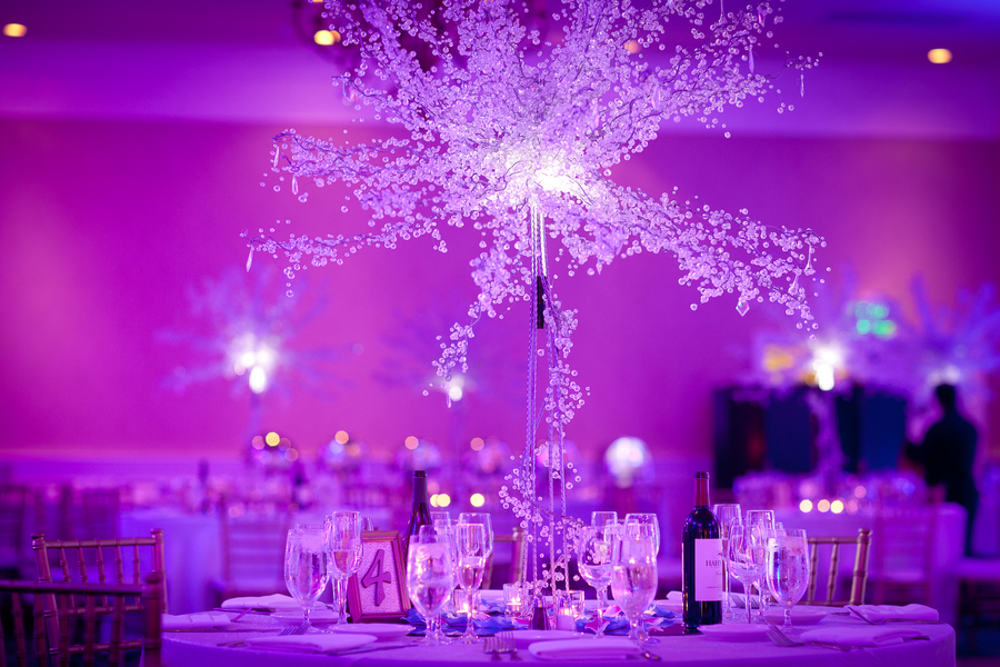 Spectacular Purple Lighting for a Winter Themed Wedding in the Summer | photographer - Portrait Design by Shanti