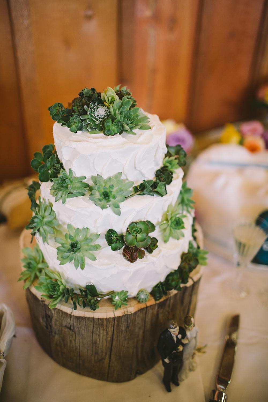 brett-birdsong-photography-082814-succulent-wedding-cake.jpg