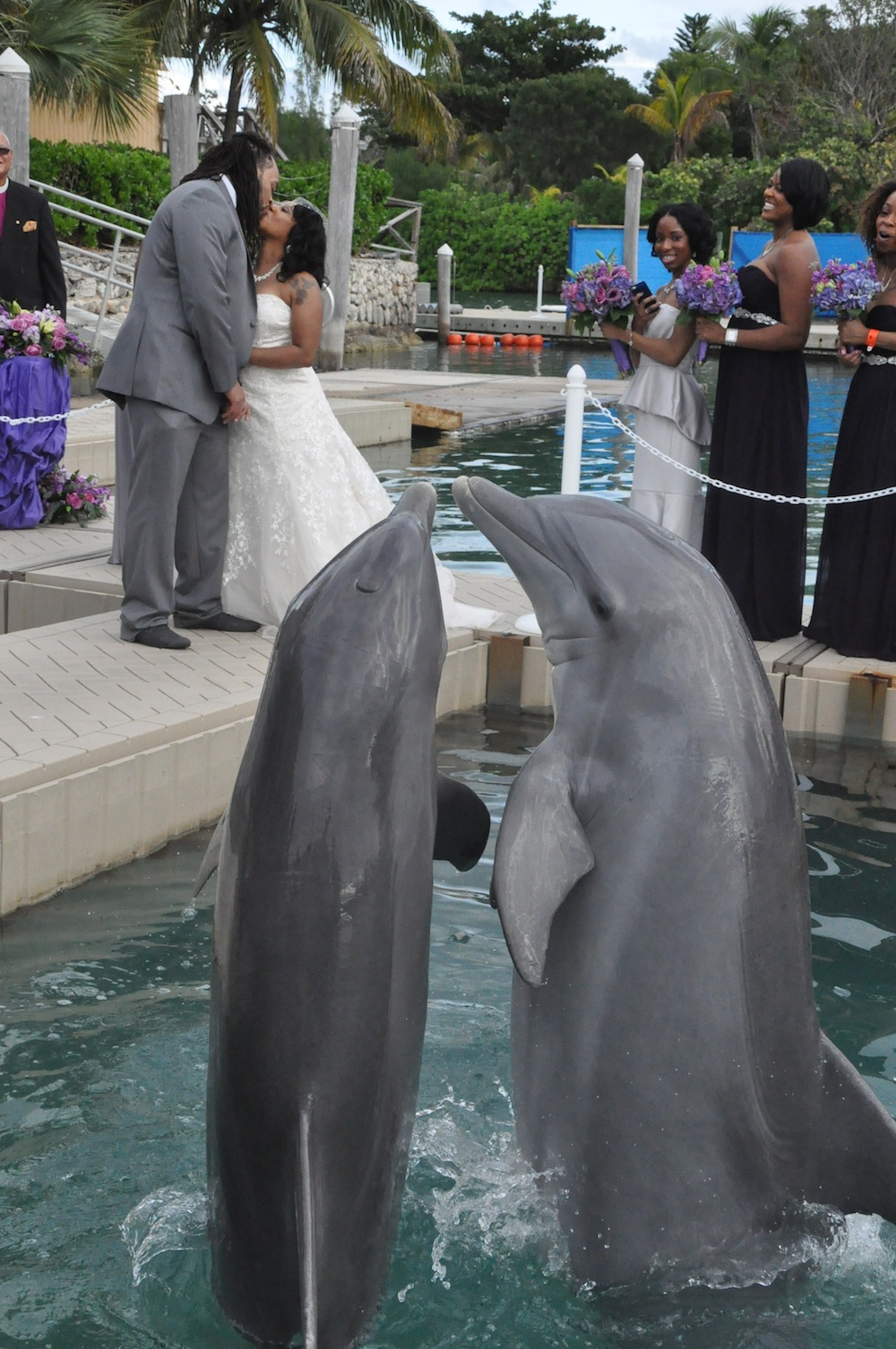 "Say ""I Do"" in Grand Bahama Island, Bahamas with the Dolphin Experience complete with coordinated kisses / as seen on www.BrendasWeddingBlog.com"