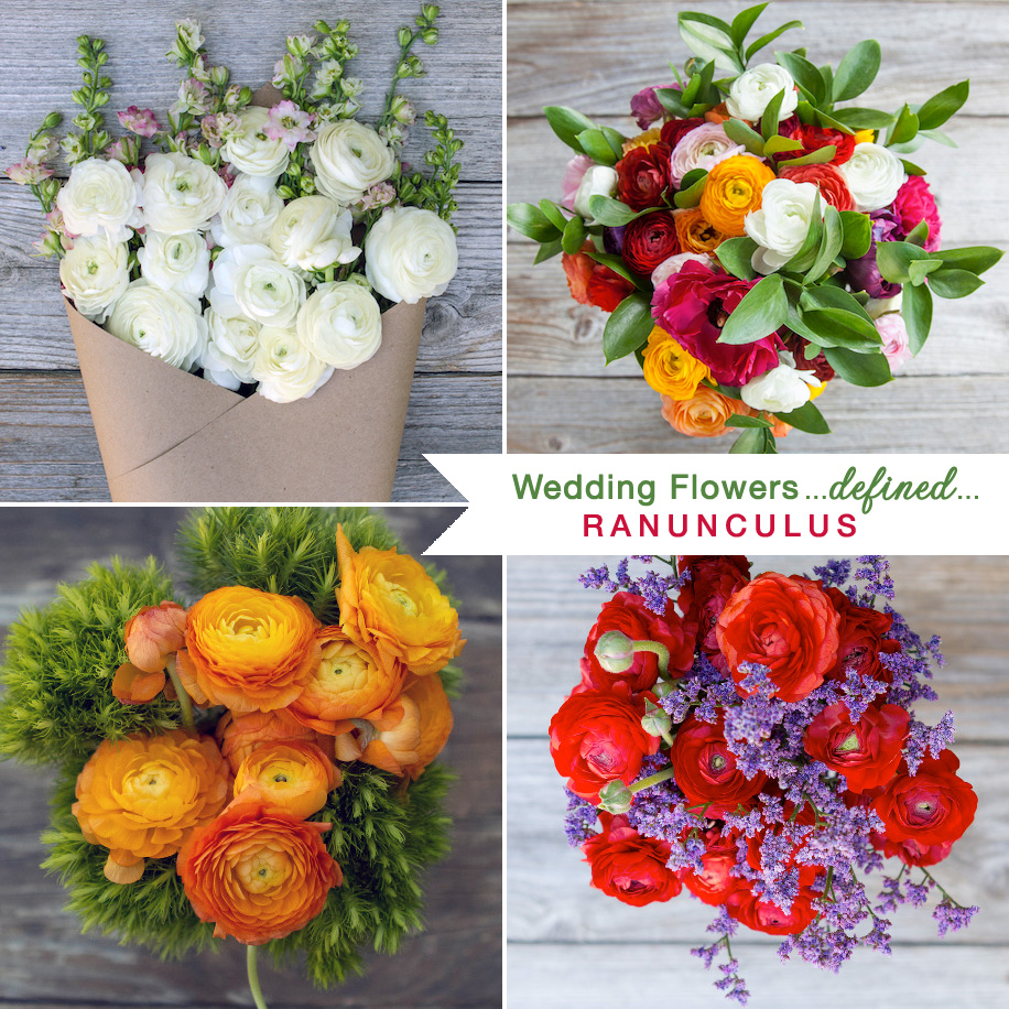 The Truth Behind Wedding Bouquets with Ranunculus | These blooms symbolize radiant charm / see more on www.BrendasWeddingBlog.com