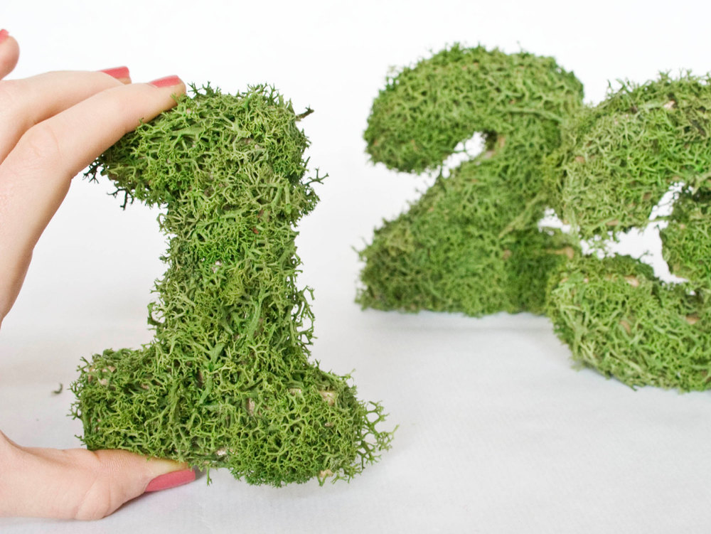 Moss Wedding Table Numbers from Pointless Pretty Etsy