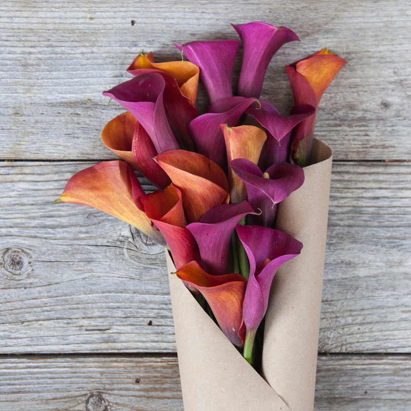 Unique Fall Bouquet :  Harvest Moon  - a beautiful bounty of Mini Calla Lilies in Orange and Pink.