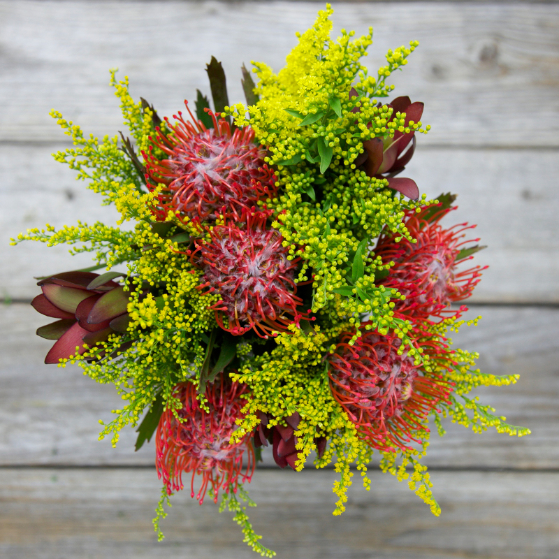 Unique Fall Bouquet :  Pumpkin Patch  - Pin Cushion Protea