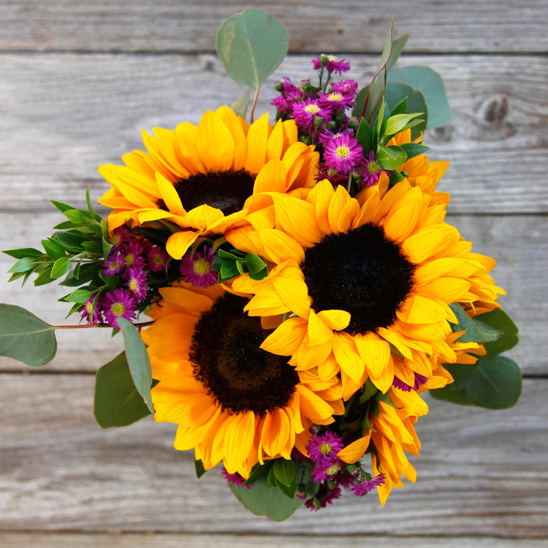 Unique Fall Bouquet :  Vibrance  - cut-to-order Sunflowers, Aster, Silver Dollar Eucalyptus, and accents