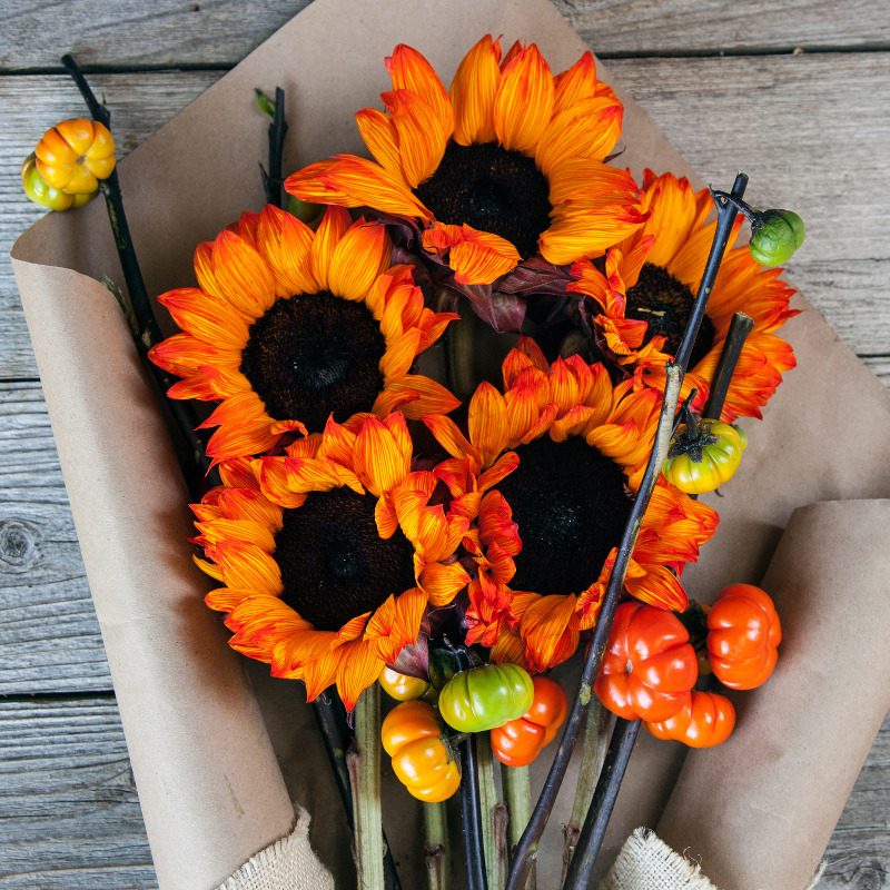 Unique Fall Bouquet :  Bouq-o-Lanterns  - orange sunflowers and orange mini-pumpkins