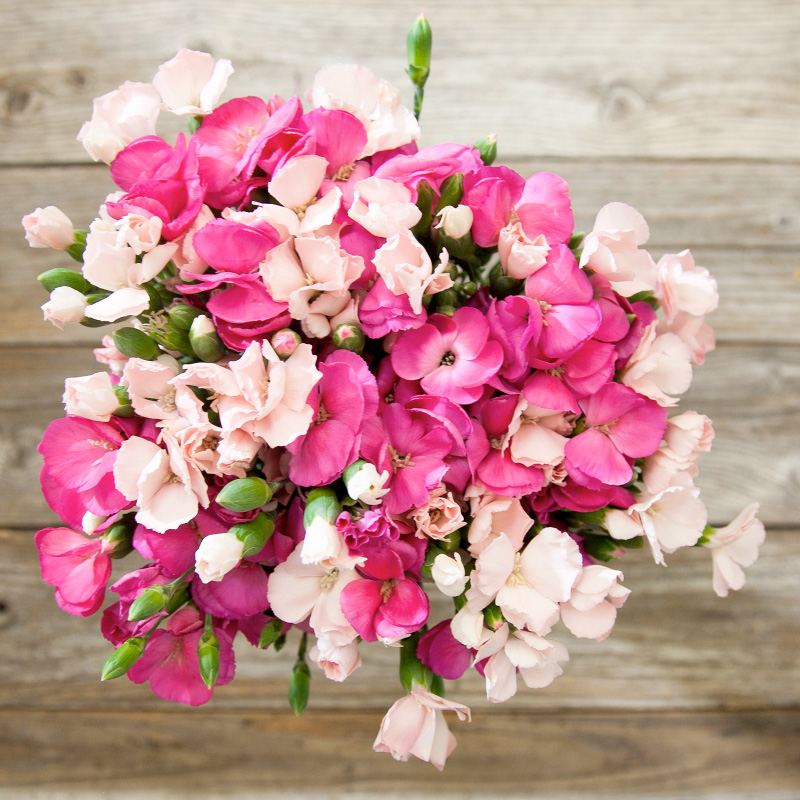 The Abracadabra Bouquet from The Bouqs features hot and light pink colors. Perfect for Valentine's Day. Perfect for Bridal Showers.