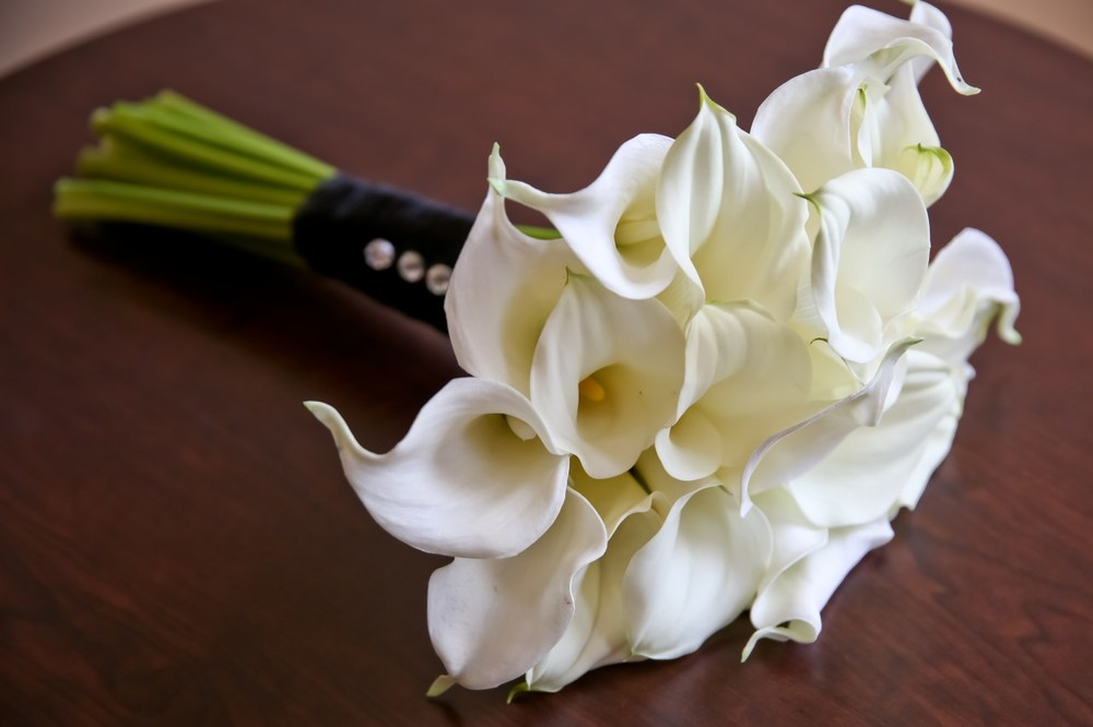 Gorgeous Calla Lily Bridal Bouquet / Photo by Carrie Ekosky Photography — Wedding Designed by Madeline's Weddings & Events