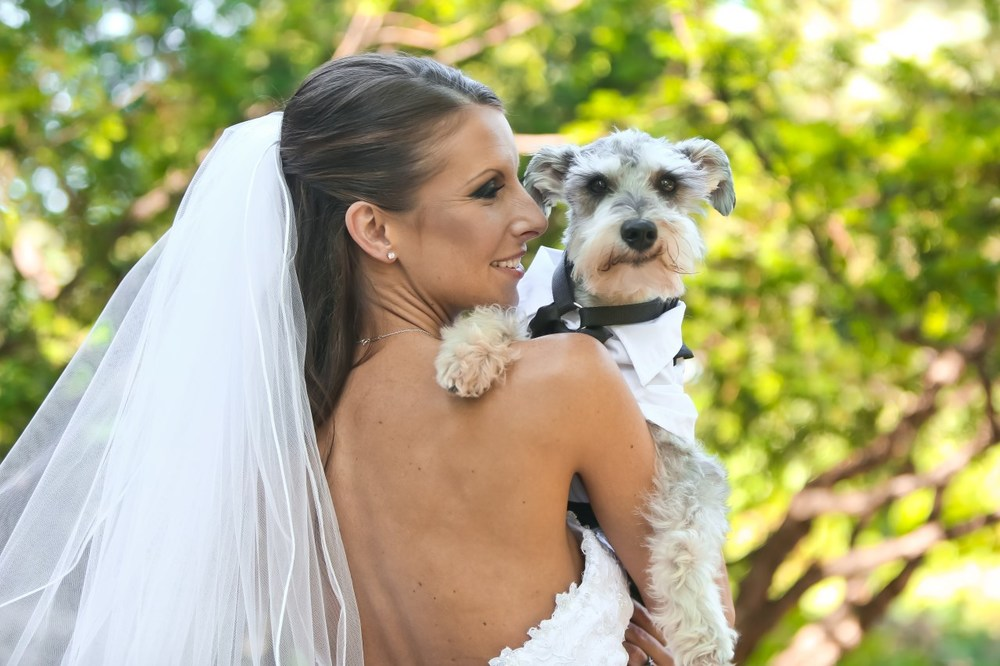Sweet Photo of Bride with her Fur Baby Ring Bearer / Photo by Carrie Ekosky Photography — Wedding Designed by Madeline's Weddings & Events