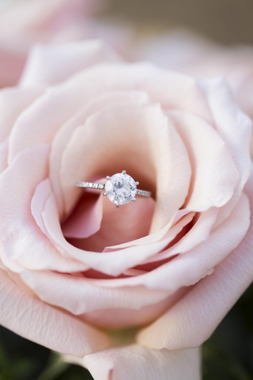 sleepy-hollow-styled-shoot-ring-on-rose.jpg