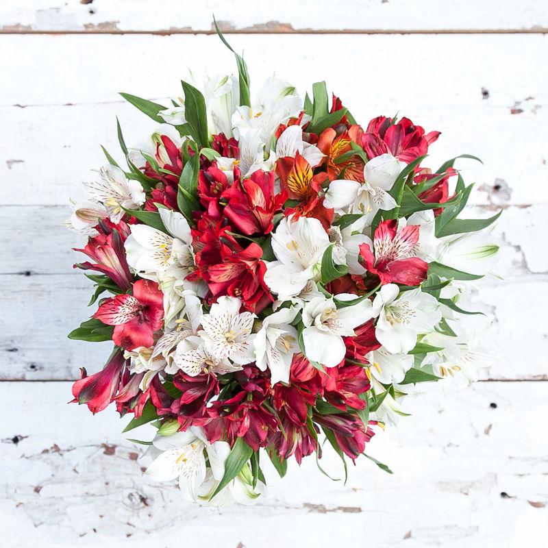 Yuletide : exotic Peruvian Lilies