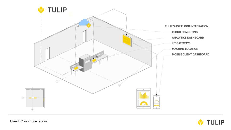 Tulip Design Final 4.jpg