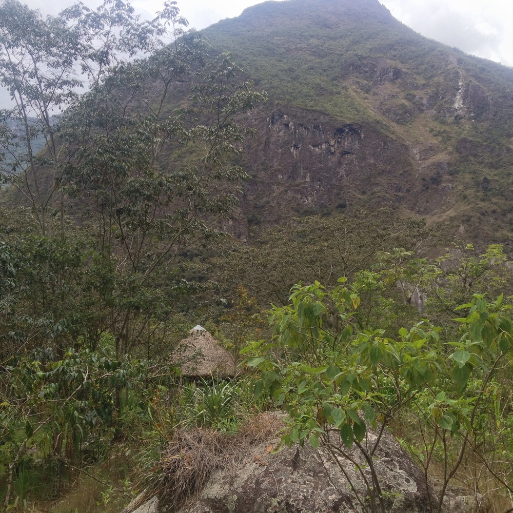 This mountain is behind Machu Picchu