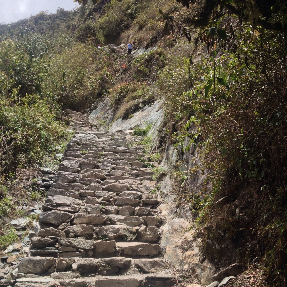 The good stairs on the climb to Machu Picchu mountain (3000m)