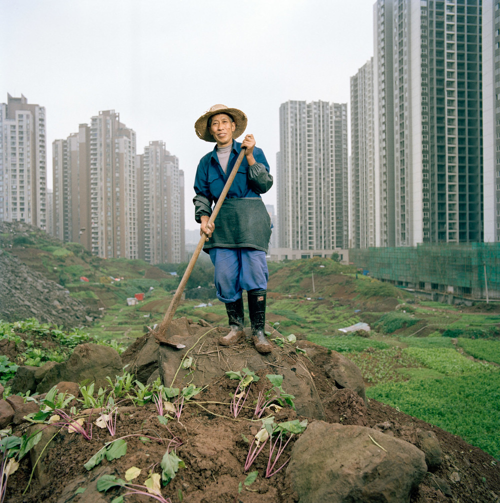 Ren Yindi. After following the transition from an Rural Hukou to an Urban one, he could not find any other way to provide for himself and his family than to go back to farm whatever lands was available around his apartment in a high rise tower.