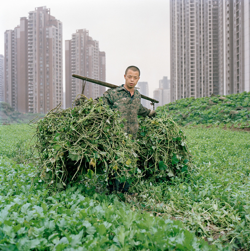 Wang Chengyun helping his uncle to clear lands in the new developed district of Jiangbei in Chongqing