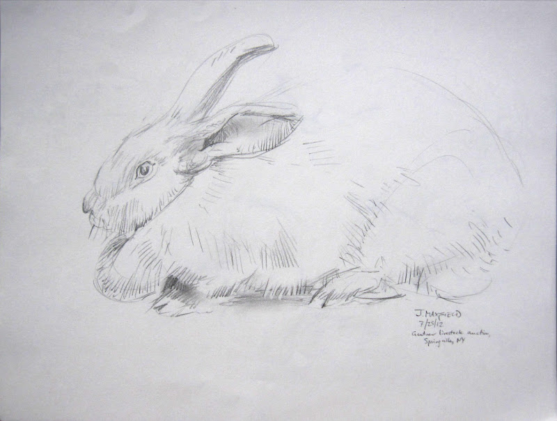 Rabbit, Springfield Auction