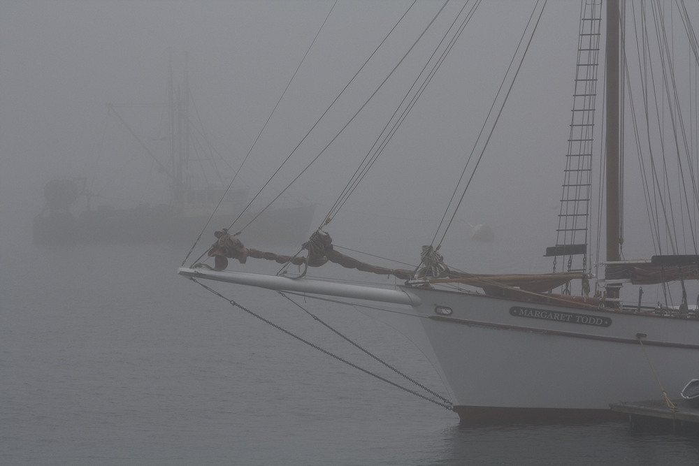 Foggy Afternoon in Bar Harbor
