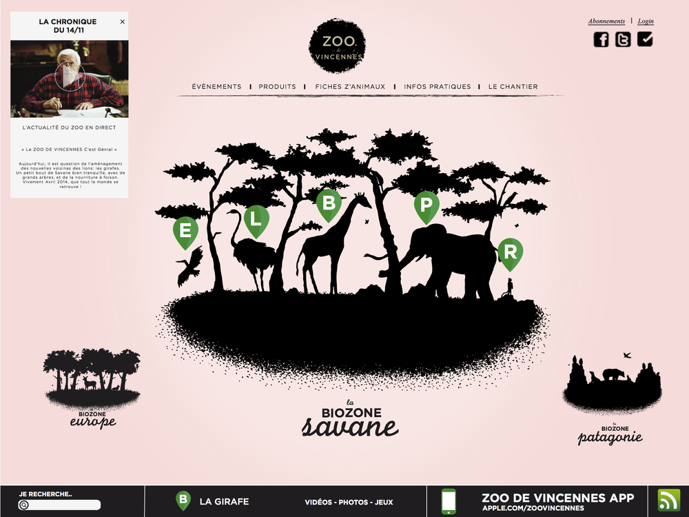 Le site du Zoo de VIncennes - www.marionchibrard.com