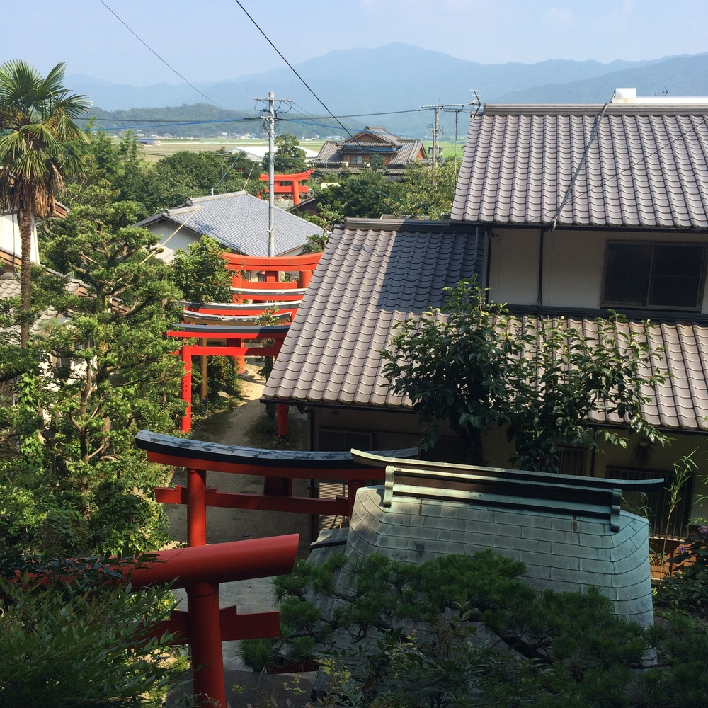 view from a nearby shrine