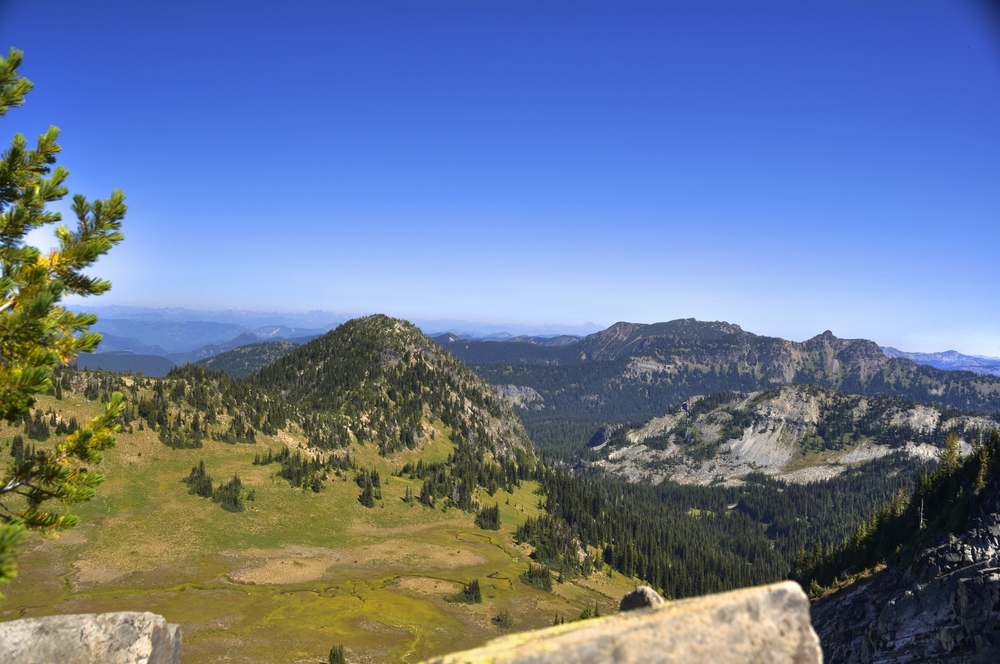 Sourdough Ridge Trail Mt Rainer