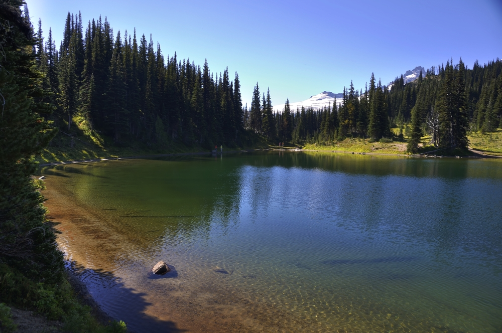 Shadow Lake, Mt Rainer