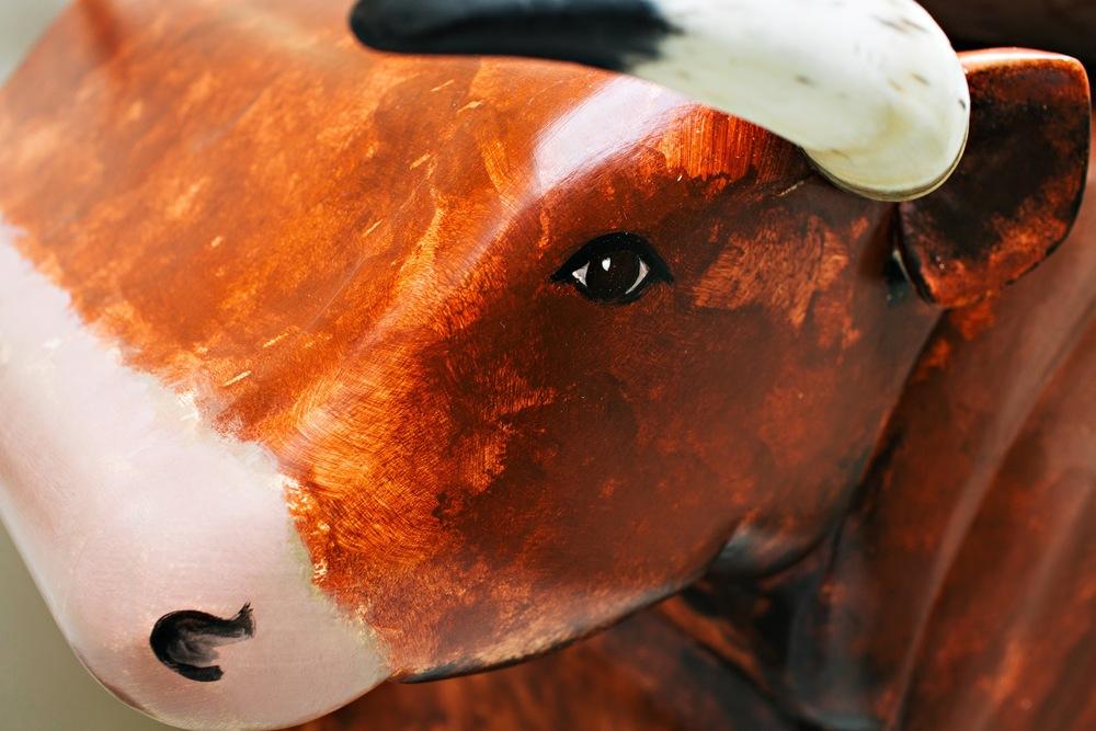 shorthorn bull cabinet
